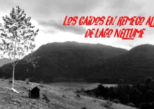 Thumbnail for the post titled: Los caídos en Remeco Alto de Lago Neltume